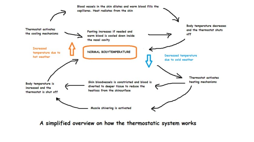 thermostatic system